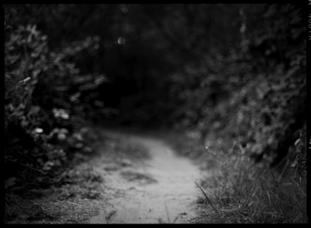 DarkPathPhotos004