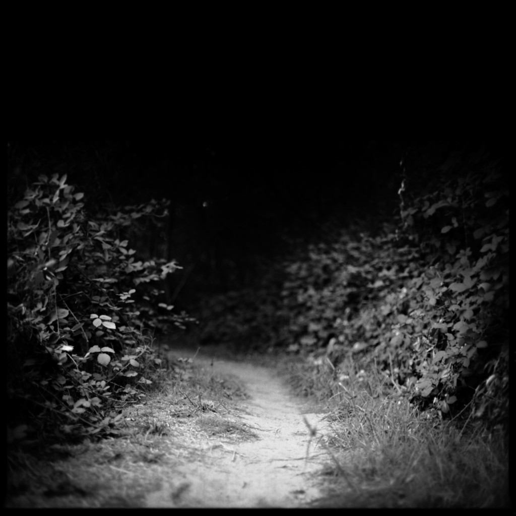 DarkPathPhotos008